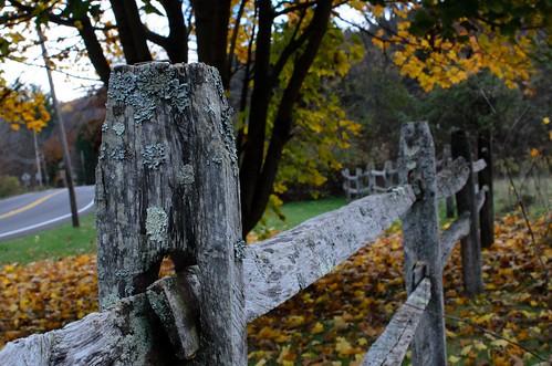 autumn nature fence landscape trail columbiacountyny handhollow