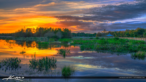 florida boyntonbeach topaz photomatixpro hdrphotography greencaywetlands greencaynaturecenterwetlands captainkimo