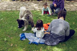 Verdeando Fest Gijón Museo del Pueblo de Asturias Mascotas   by De tu Sueño y Letra