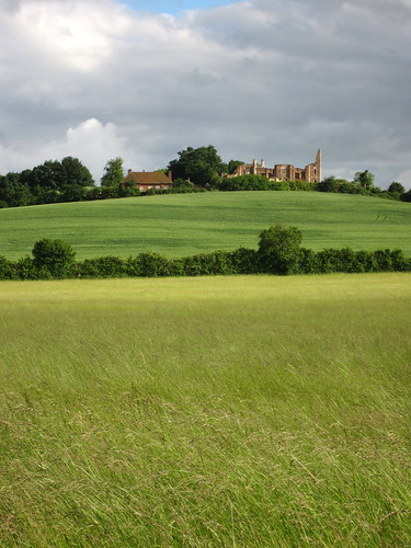 canon ixus 220hs houghton house bedfordshire england ruins farm hedges sunlight historic trees cloud