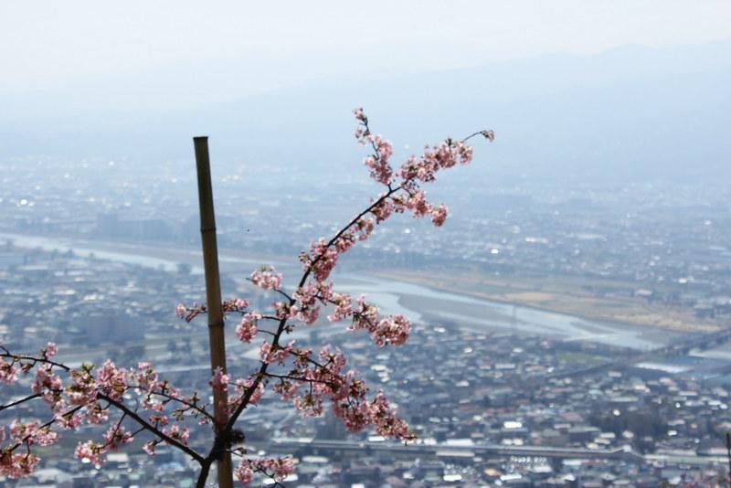 2014-03-16_00102_高松山