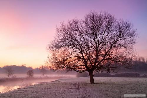 england mist sunrise unitedkingdom meadows grantchester bw10stopfilter southcambridgeshiredistrict
