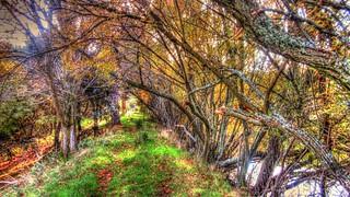 2014_11_22_Aldea_del_Fresno_062 | by M.a.r.t.e.r.