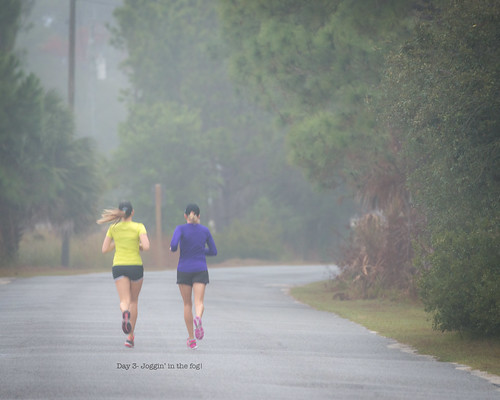 "jogging foggymorning 2015 day003 standrewsstatepark project365 edition"" 365the 2015yip 365in2015 25602992 03jan15"