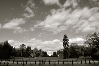 Washington   by Crash Test Mike