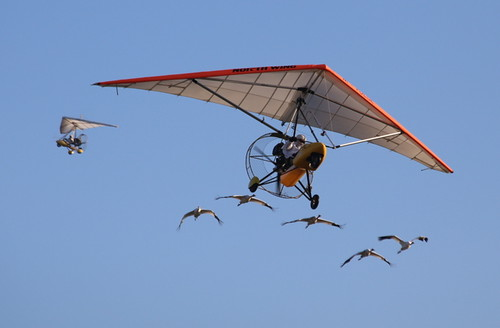 Whooping cranes follow ultralights leaving Alabama | by USFWS/Southeast