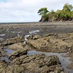 10 Viajefilos en Panama, Santa Catalina 03