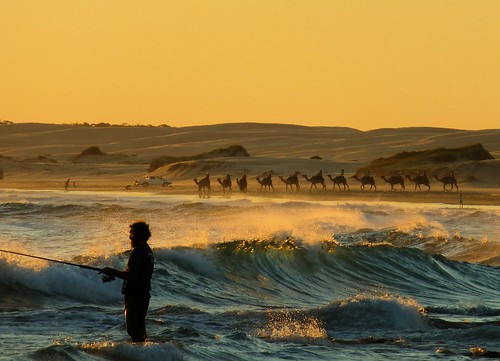 sunset beach water silhouette fishing sand waves camels birubi