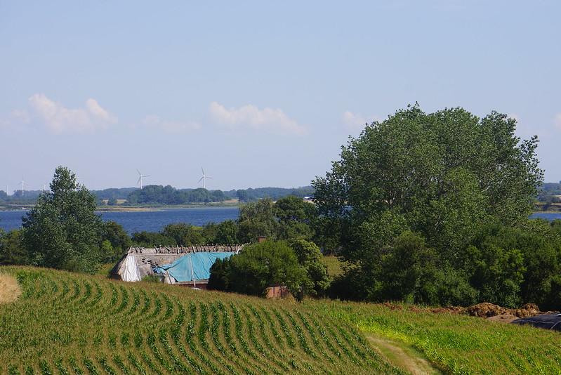 Kaedeby-Haver-2014-07-24 (31)