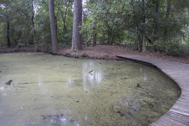 Houston Arboretum and Nature Center_20