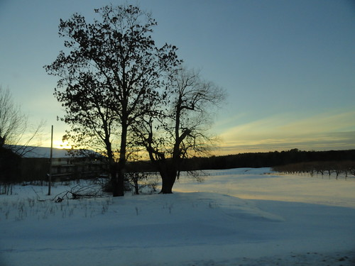 blue trees winter light sunset sky snow nature field clouds barn landscapes scenery seasons farm maine scenic newengland sonydsch55