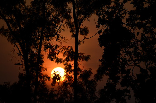 morning shadow orange sun colour art beautiful sunrise fire photography photo interesting nikon image srilanka 5100 silhoutte hopton asiasociety badulla d5100