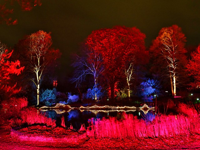 Glowing Park