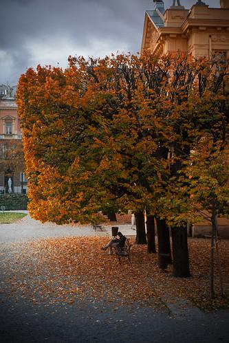 Autumn Noise | by Phil Dragash