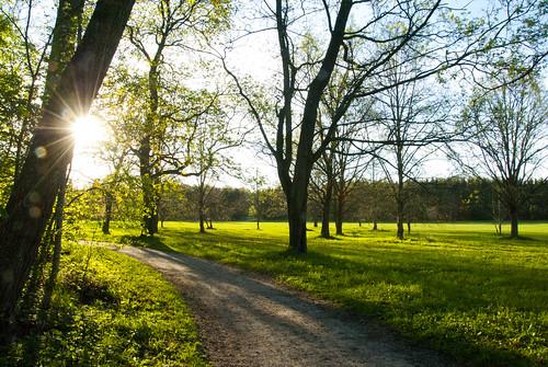 green spring springtime vår grön ulriksdal grönt