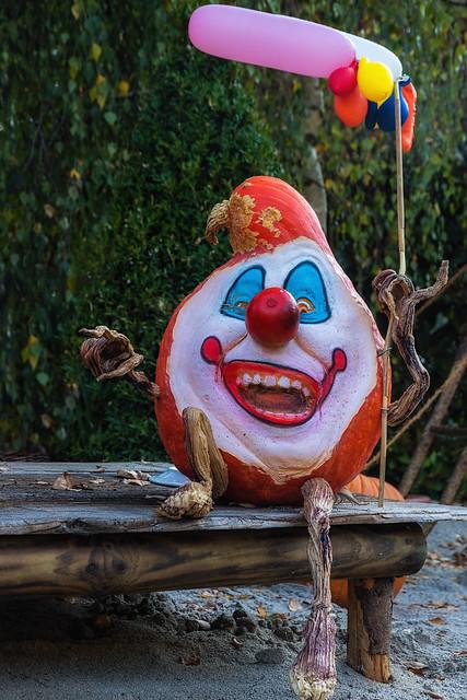 Pumpkin in disguise