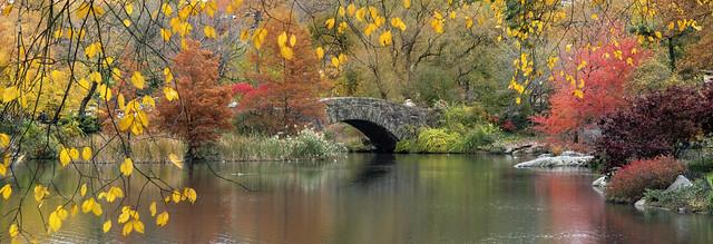 Fall colors around Gapstow Bridge, Central Park, Manhattan, New York, USA.