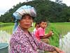 Minangkabauové, Indonésie, foto: Kateřina Karásková