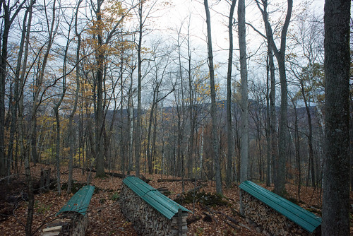 Late Fall Wood Piles Viewed from Our Roof | by goingslowly