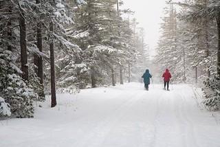 Winter wonderland | by USFWS Headquarters