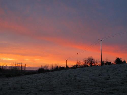 ireland winter irish field rural sunrise landscape countryside scenery cork frosty redsky telegraphpole newmarket htt ilobsterit telegraphtuesday