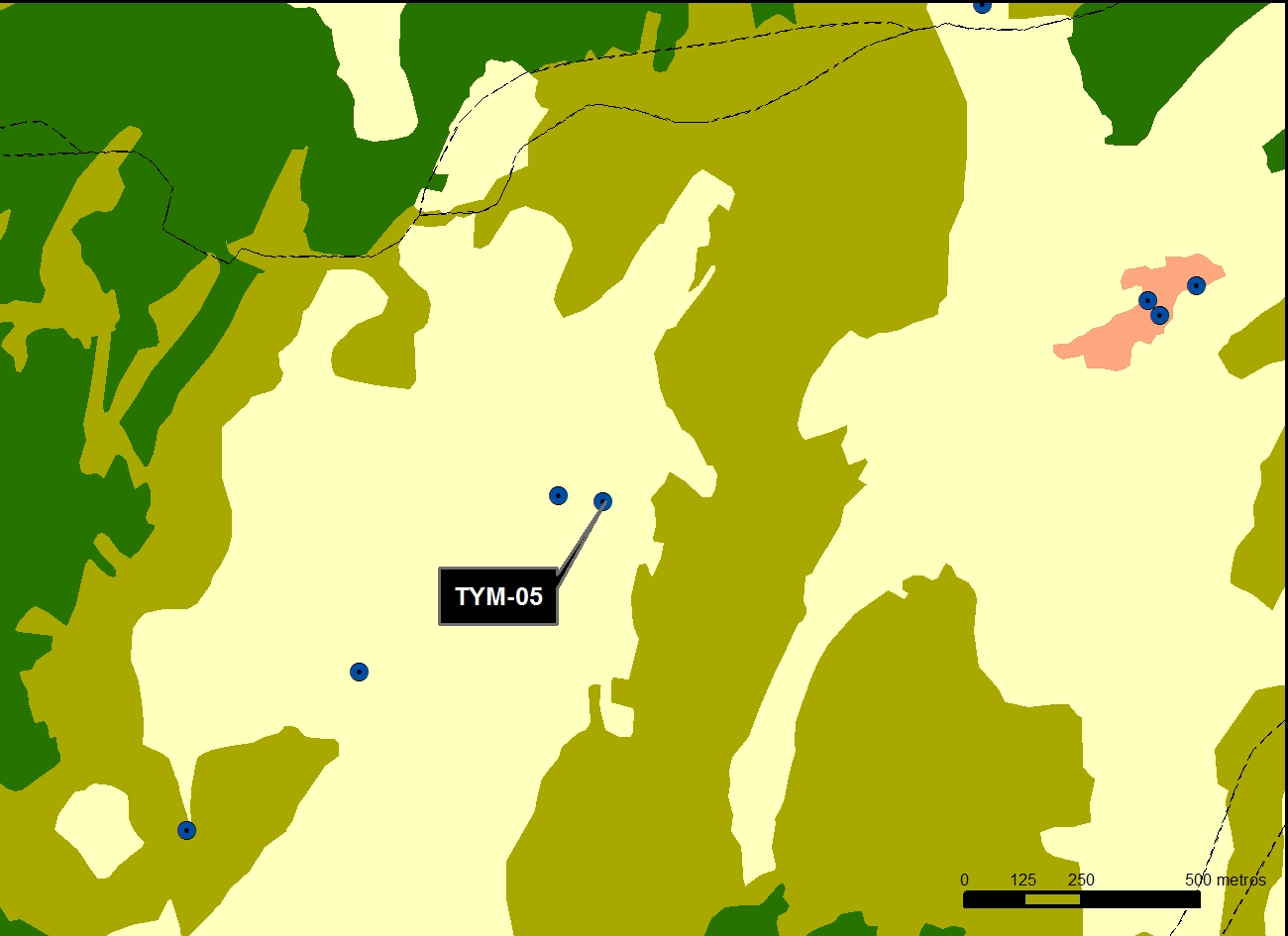 TYM_05_M.V.LOZANO_GAMELLONCILLO_MAP.VEG