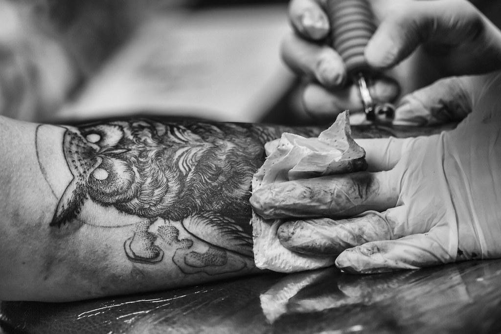Owl Tattoo in progress
