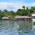 07 Viajefilos en Panama. Isla Bastimentos 04