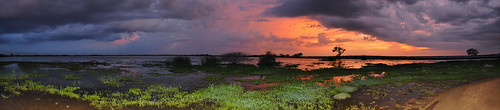 travel ceylon uva uvaprovince wetlands srilanka grasslands southasia asia lake weerawilalake outdoor landscape water sky sunset bright colour purple red blue cloud clouds tree trees serene panorama pano dnysmphotography dnysmsmugmugcom