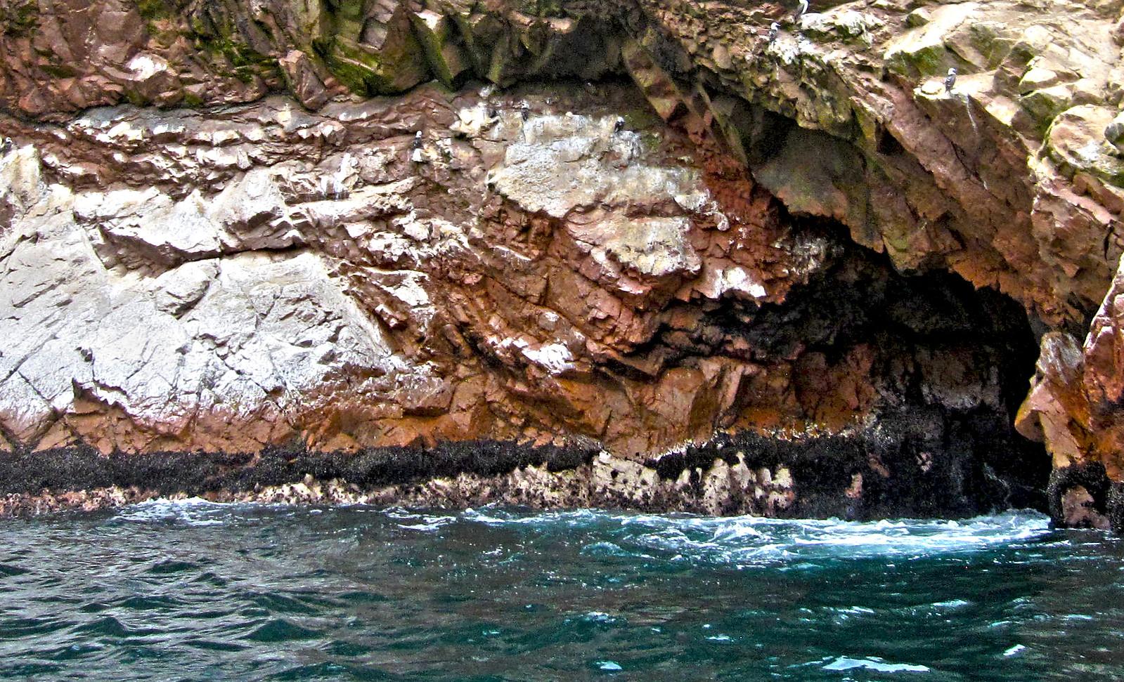 Islas Ballestas 72