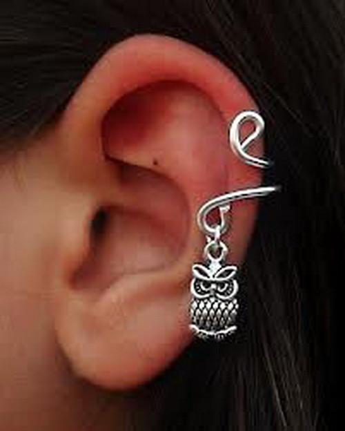 Cute Ear Piercings Ideas Owl Ear Piercing Cute Ear Piercin Flickr