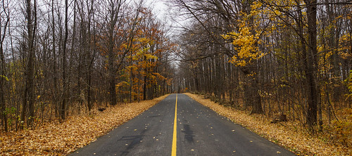 Fall Drive | by Beyond Mark