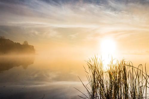 sky sun lake reflection sunrise canon reeds glendale heights cirrus 6d rodde eastbranchforestpreserve fpddc kevinrodde kevinroddephoto kevinroddephotography