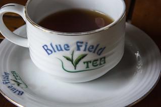 Sri Lanka. Nuwara Eliya. Blue Field.