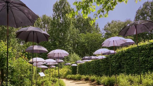 le jardin aux parapluies