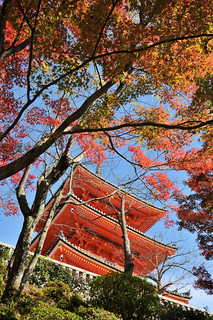 Autumn scene at Kiyomizu-dera | Kyoto (京都市), Japan | by Ping Timeout