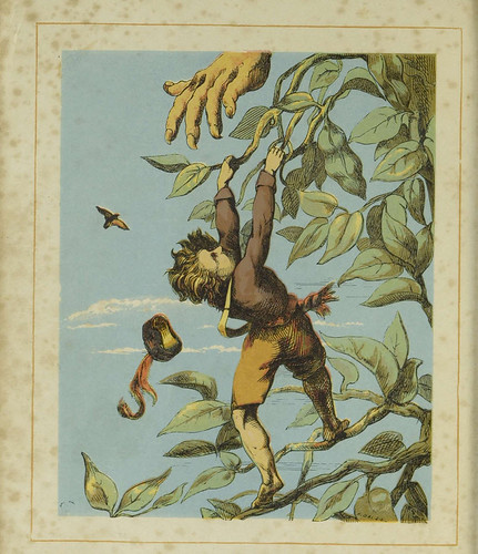 The lively history of Jack & the beanstalk 37131013236575 | by Toronto Public Library Special Collections