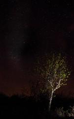 Astro fotografia