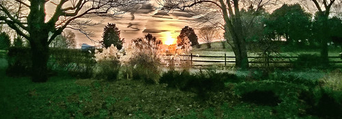 trees sunset sky sun nature landscape annapolismaryland harnesscreek