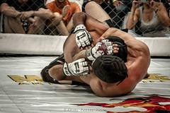 MMA . Ariel Pasini Photo
