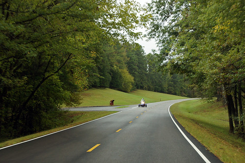 Natchez Trace Parkway | by SomePhotosTakenByMe