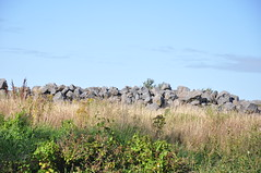 The Pile of Unremarkable Stones