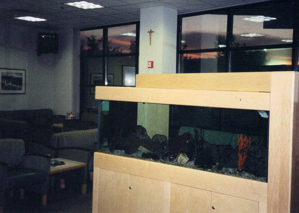St  Alphonsus Medical Center ER Waiting Room tropical fish