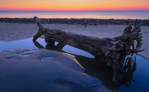 light color reflection beach nature water sunrise canon georgia landscape dawn coast spring sand rocks driftwood shore dreamy jekyllisland boneyardbeach