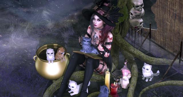 Witch Gacha You Like?
