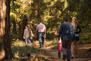 Storytime Through the Seasons: Under the Redwood Tree   by UC Davis Arboretum & Public Garden