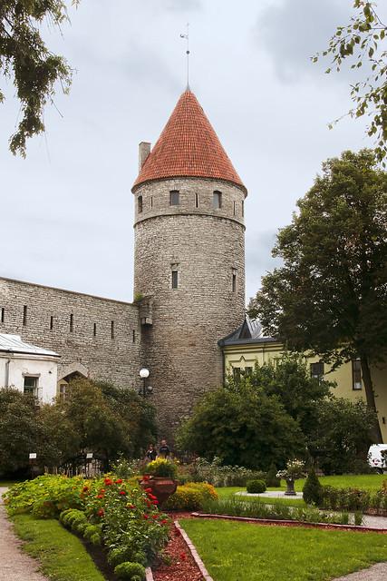 Tallinn_City 2.1, Estonia