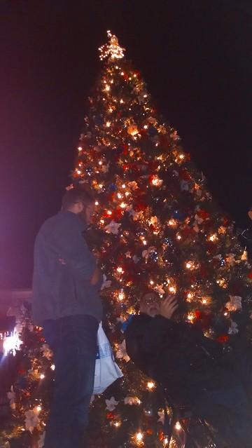 IMG_20141223_204041366 sbau artH camino xmas tree