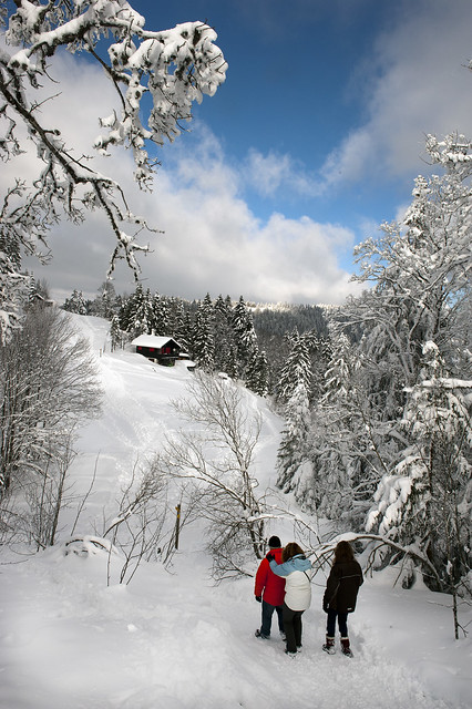 With a little help from my friends...Swiss winter time in the Jura mountains. No. 3602.