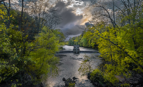 green woods stream cloudy